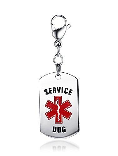 Vnox Edelstahl personalisierte Haustier medizinische Alarm Hund ID Notdienst für Hundezubehör,frei eingraviert Pet-diabetes-tag