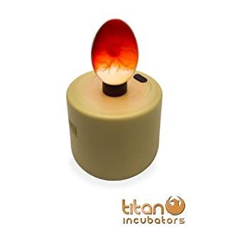 Titan Incubators High Intensity Chicken Egg Candler/Egg Candling - Battery Powered 3
