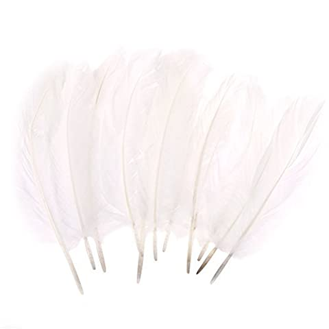 Pack of 10 Natural Dyed Arts & Craft 20cm Feathers - White