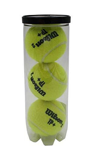 Pelotas de Tenis/Padel Wilson TP Plus