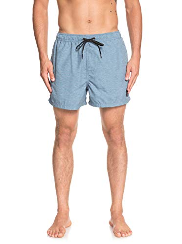 Quiksilver Everyday Stretch Shorts, Hombre, Iron Gate, S amazon beige