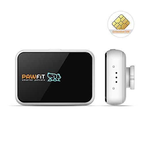 Pawfit-S GPS-Tracker und Aktivitätsmonitor für Hunde Inklusive SIM-Karte, GPS-Ortungsgerät für Haustiere mit Leichtem Halsband und IP66-Schutzart Wasserdicht