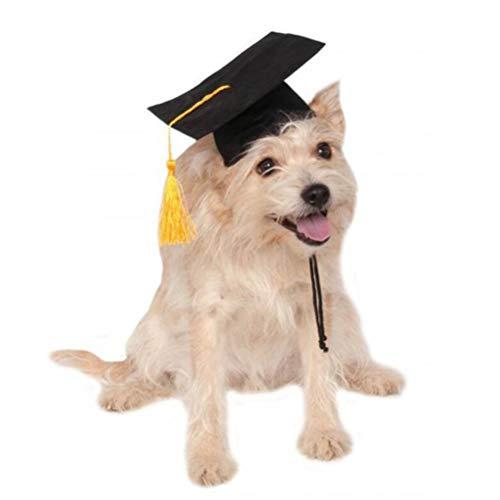 POPETPOP Haustier Hund Hut Dr. Hut Dekoration Hund Benutzerdefinierte Graduierung Kappe Hund Grad Kopfbedeckung Für DIY Haustier Kreative Party Zubehör-Schwarz (Ideen Dekorationen Graduierung)