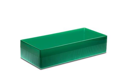 Authentics 1300265 Kali Boîte de rangement moyenne Transparent/vert 28,5 x 6 x 12 cm