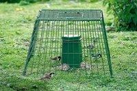 Ground Feeding Bird Guard - Large Mesh