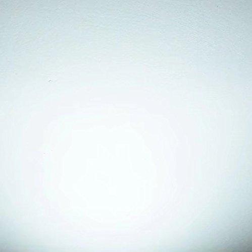 Bonlux R7s LED Lampe 118MM 20W J118-Typ Leuchtmittel Kaltweiß 6000K 1800 Lumen 360 Grad 2-Stück (nicht Dimmbar)