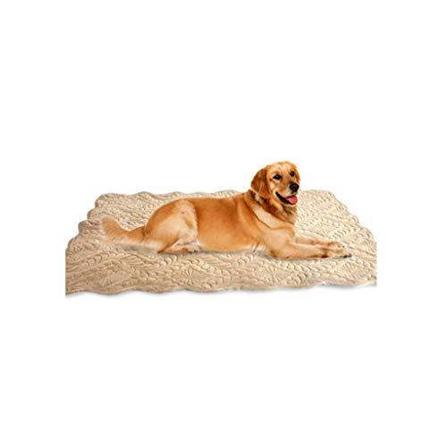 Premium flauschige Wolle Hund Decke, weiche und warme Haustier werfen Hund und Katze Beige (großer Hund) (größe : XL)