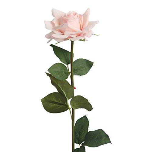 Rose Künstliche Blumen Rosen für Seidenblumenstrauß Real Touch Schöne Echtes Moisturizing Curling Knospe Latex künstliche Rose Kunstblumen Blume Dekoration Blumenstrauß Blumenarrangement (Beige)
