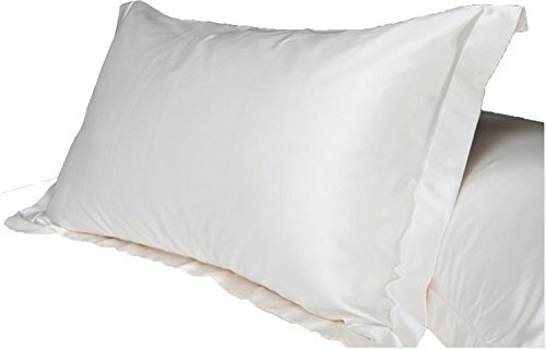 2pc New Queen/Standard Silk~y Satin Pillow Case Multiple Colors (white) by Hotportgift -