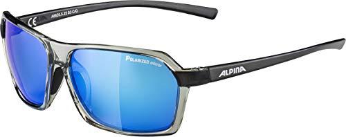 ALPINA Erwachsene Finety P Sonnenbrille, transparent-Grey, One Size