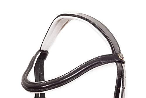 Caroline Weiß Unterlegt gebisslose Trense bitles Bridle Sidepul (Vollblut Cob)