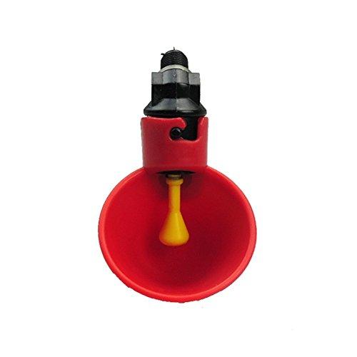 Farm & Ranch - Comedero automático para aves de corral y aves de corral con vasos de riego y cuencos de plástico rojo, para aves de pato, 6 unidades