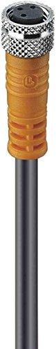 Belden Kupplung M8 RKMV 4-225/2m Konfektioniertes Sensor-Aktor-Kabel 4020841438899
