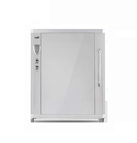 MXRqndqa Wärmegeräte Infrarot Desinfektion Haushalt kleinen Schrank Mini Desktop Single Door Geschirr Desinfektion Schrank (Farbe : Silber)