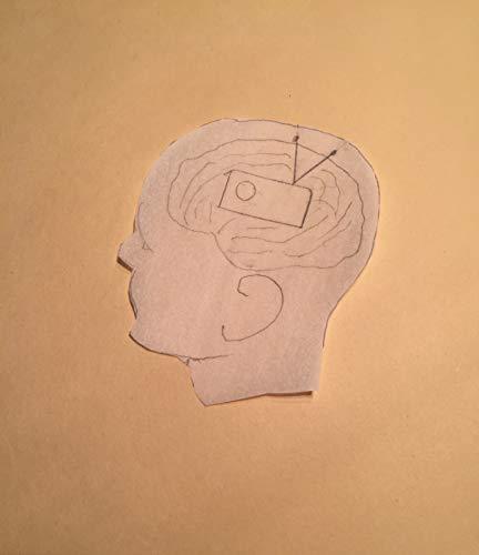 Brain=Mind=Radio-Receiver=Superdeterminism (English Edition) Quantum-receiver