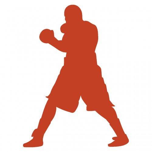 plot4u Boxen Wandtattoo Boxer 'Smokin Joe' in 6 Größen und 19 Farben (22x30cm kupfermetalleffekt) (Joes Boxer)