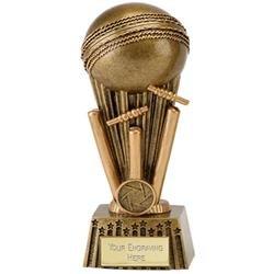Cricket Focus (N) Cricket Trophy Award