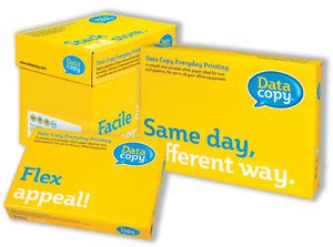 data-copy-everyday-paper-ream-wrapped-80gsm-a4-white-ref-4594-500-sheets