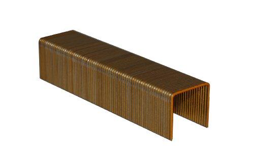 Bea 10004435145/19nk 1Krone 16Gauge Draht mit 3/4-Zoll-Bein ähnlich Bostitch 16s2, 10.000Pro Box (16-gauge-box)