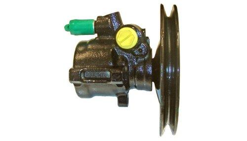 direction Lizarte 04.88.0254-1 Pompe hydraulique