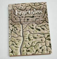 Fractales: Anatomía íntima de la marisma