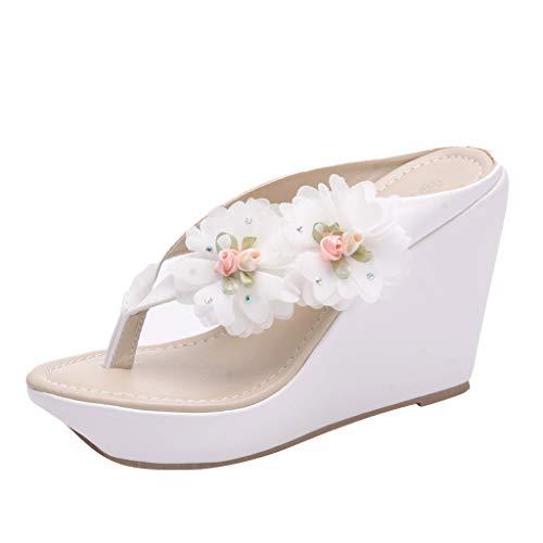 Mitlfuny Damen Sommer Sandalen Bohemian Flach Sandaletten Sommer Strand Schuhe,Damen modische lässige Blume aushöhlen tragen außerhalb Hausschuhe Schuhe (Cushe Womens Schuhe)