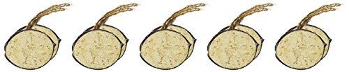 dobar-zehn-gefuellte-kokosnuesse-in-5-vogelfutter-sorten-zum-aufhaengen-ganzjaehriges-fett-futter-wildvogelfutter-wildvoegel-1er-pack-1-x-2-kg-2