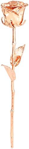 St. Leonhard Geschenk Damen: Echte Rose für Immer schön, mit 18-karätigem* Roségold veredelt, 28 cm (Echte Rosen vergoldet) Vergoldete Rose