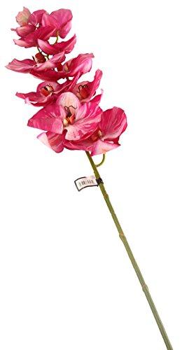 Floral Elegance F068ML - Orchidée Phalaenopsis/Papillon artificielle magenta de 109 cm