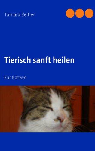 Tierisch sanft heilen: Für Katzen
