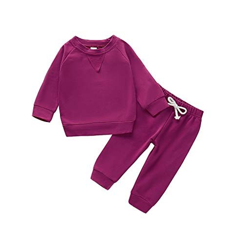 Livoral Toddler Kids Baby Boys Girls Solid Sweatshirt Pullover Tops Pants Outfits Set(Lila,2-3 Jahre)