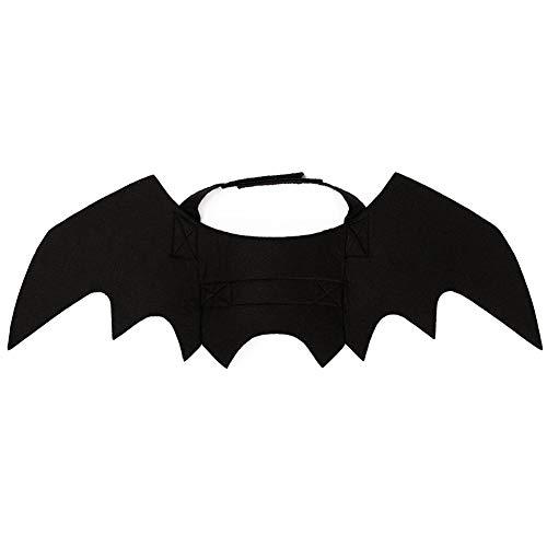 ZREAL Halloween Katze Kostüm Anzug Kürbisse Kragen Bell Black Bat Flügel für Hündchen ()