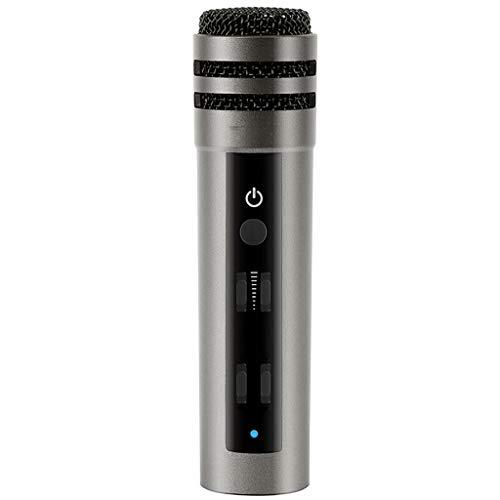 Kondensatormikrofon, Karaoke Mikrofon Plug & Play Home Studio Mikrofon für Smule, Kondensator Aufnahmen für Yokee/StarMaker / Karaoke Apps (Color : Gray)