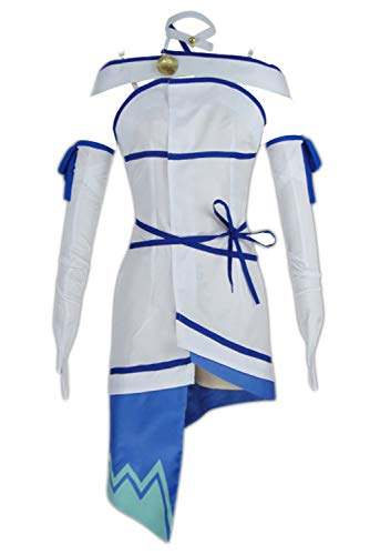 is It Wrong to Try to Pick up Girls in a Dungeon? Hestia Kleid Cosplay Kostüm Damen XL