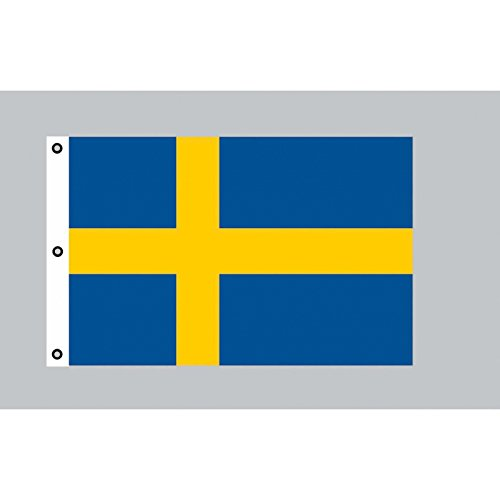 Riesen-Flagge: Schweden 150cm x 250cm -