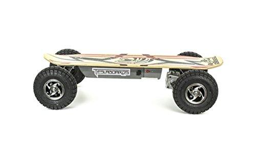 teslaboard extreme skateboard longboard lectrique 900 w. Black Bedroom Furniture Sets. Home Design Ideas