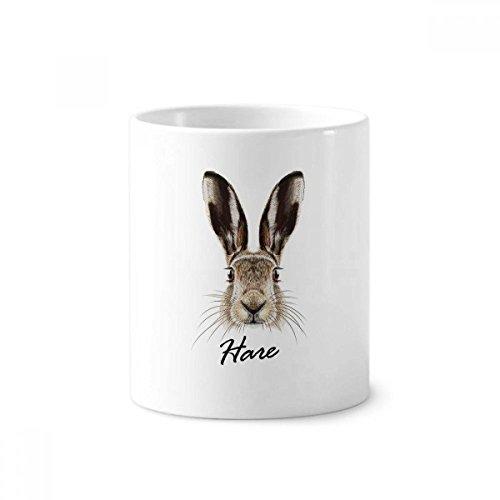 Grau big-nosed Wild Hase Tier Keramik Zahnbürste Stifthalter Becher weiß Tasse 350ml Geschenk