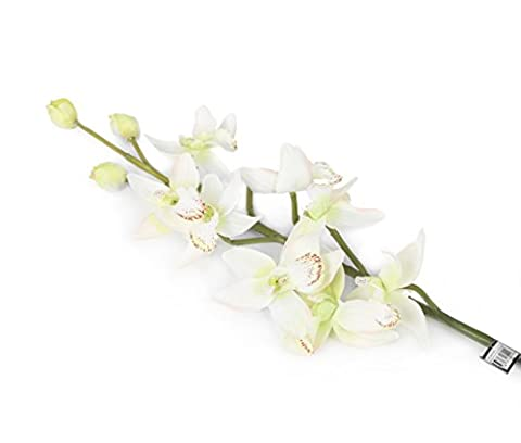 Floral Elegance Orchidée Cymbidium artificielle 84 cm tige simple Blanc et