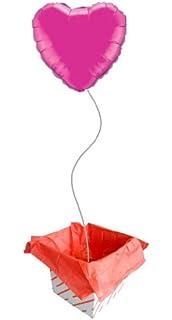 with Auto Foil Balloon Shut Off Valve Pkg//1 Casinlog Balloon Inflator Dual Mylar and Latex Balloon Filler Valve