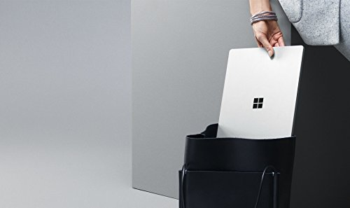 Microsoft 3429 cm 135 Zoll surface area Laptop Intel central i7 256GB Festplatte 8GB RAM Intel Iris Plus Graphics 640 Win 10 S Platin Grau Notebooks