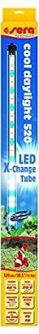 sera 31254 LED cool daylight 520 - Bläuliches Tageslicht für Süßwasser- und Meerwasseraquarien (10.000 - 12.000