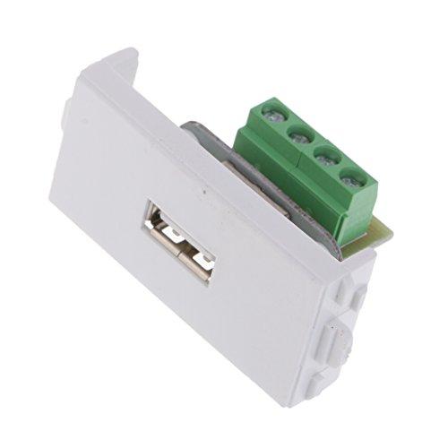 Homyl USB Typ Wanddose Modul Lötfreien Buchse, Einfach zu installieren
