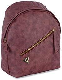 Baggit Spring-Summer 2019 Women's Handbag (Wine)