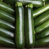 Légumes - Kings Seeds - Flux des paquets - Courgette - minuit F1