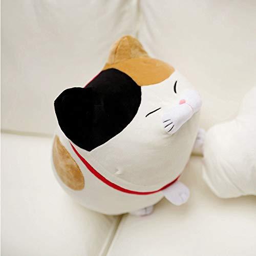 xiaoyuershop Nette Amuse Katze Glück Katzen Plüschtier Gefüllte Kinder Puppe Bart Segen Kissen Cartoon Weiche Tier Dekoration Kissen 40 cm (Bart Der Katze)