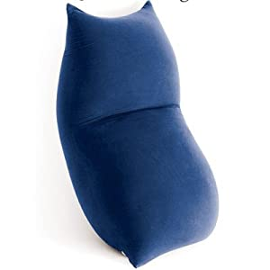 Baloo Bean Bag Chair Colour: Blue