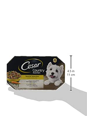 Cesar Country Kitchen Dog Trays Special Selection