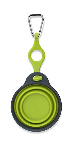 Dexas Popware Travel Pet Cup with Bottle Holder and Carabiner Green 1 Cup 8  oz
