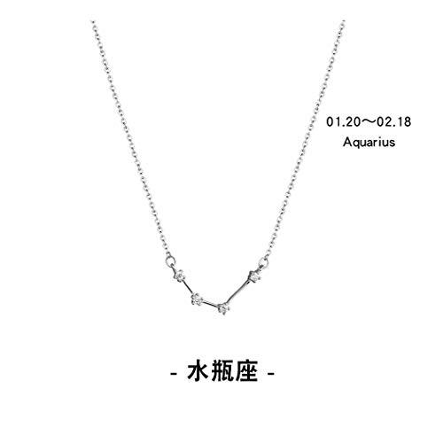 Nsxlscl collane del choker delle donne argento sterlina 925 collana del pendente di dodici costellazioni creative monili del partito di cerimonia nuziale per le donne, acquario