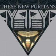 Beat Pyramid (+Bonus) by These New Puritans (2008-03-18) (Japan Puritan)
